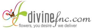 Divinefnc