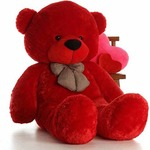 Click4Deal Soft Cotton Teddy From Rs. 480