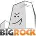 Get Your .BIZ Domain At Rs.399