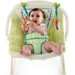 Price Drop: Bright Starts Rock Along Seat Baby Rocker@ 2059 (MRP: 3999)    Check PC