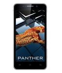 iBall Andi 5k Panther (8GB, Wine)