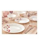 Larah by Borosil- 19 pieces Dinner Set - Janus Print
