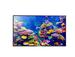 Panasonic 139.7 cm (55) 4K (Ultra HD) Standard LED TV TH-55CX400
