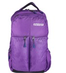American Tourister Insta 02 30 L Laptop Backpack  (Purple)